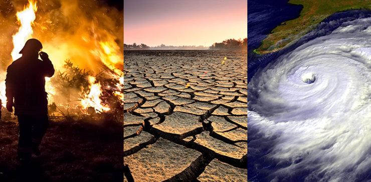 https://keepgrowshop.com/wp-content/uploads/2020/05/climate_change_effect.jpg